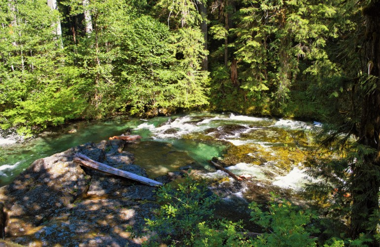 5 Must-See Places to Visit and Hike Near Portland, Oregon