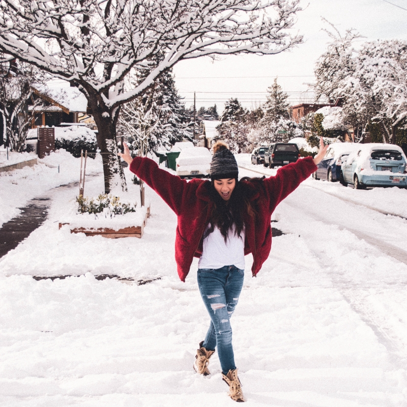 Snow Day in Seattle - 2019