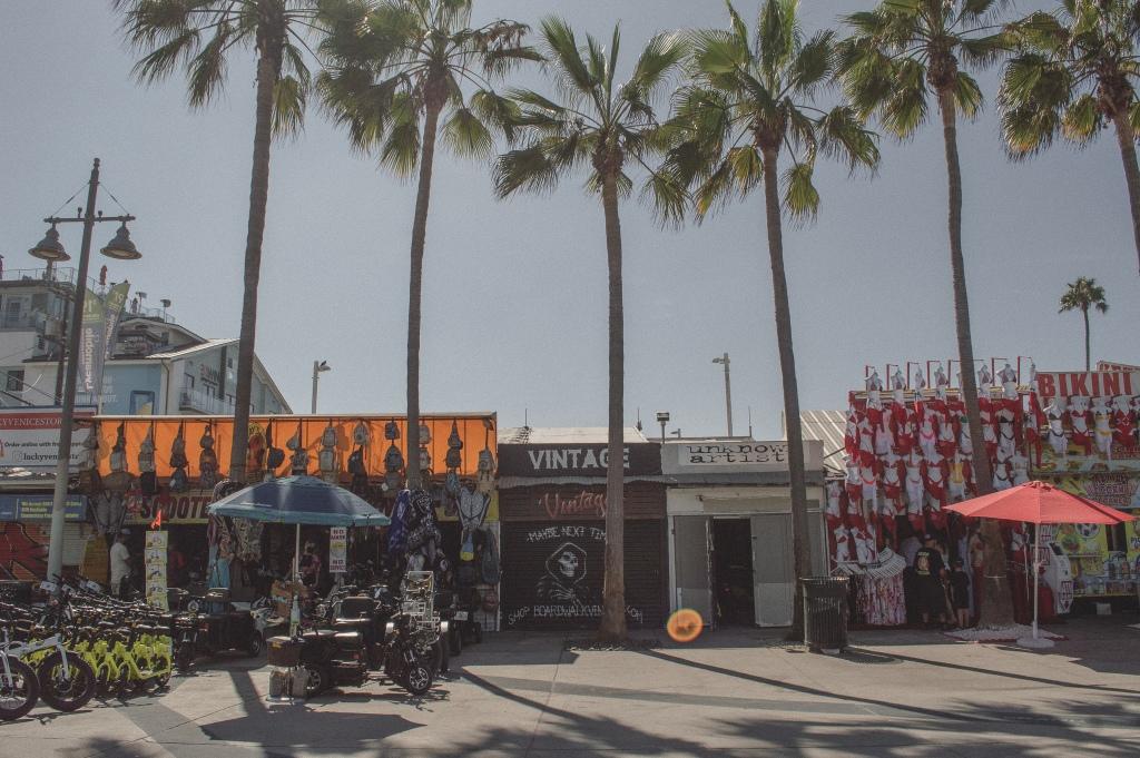 Vendors at Venice Beach | Venice, Los Angeles, California
